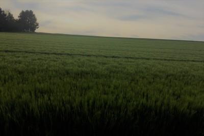 Kanzach - Dürnau